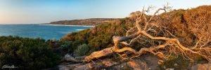 conto's beach margaret river western australia