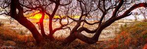 australian landscape photography sunshine coast queensland
