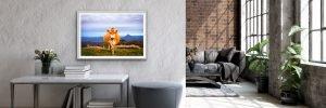 australian landscape photography prints