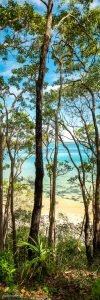 noosa landscape photography