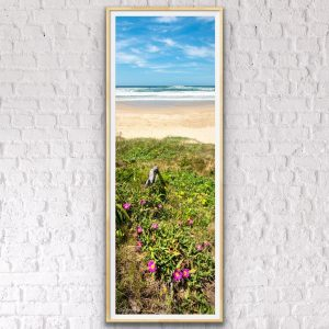 peregian beach landscape photo
