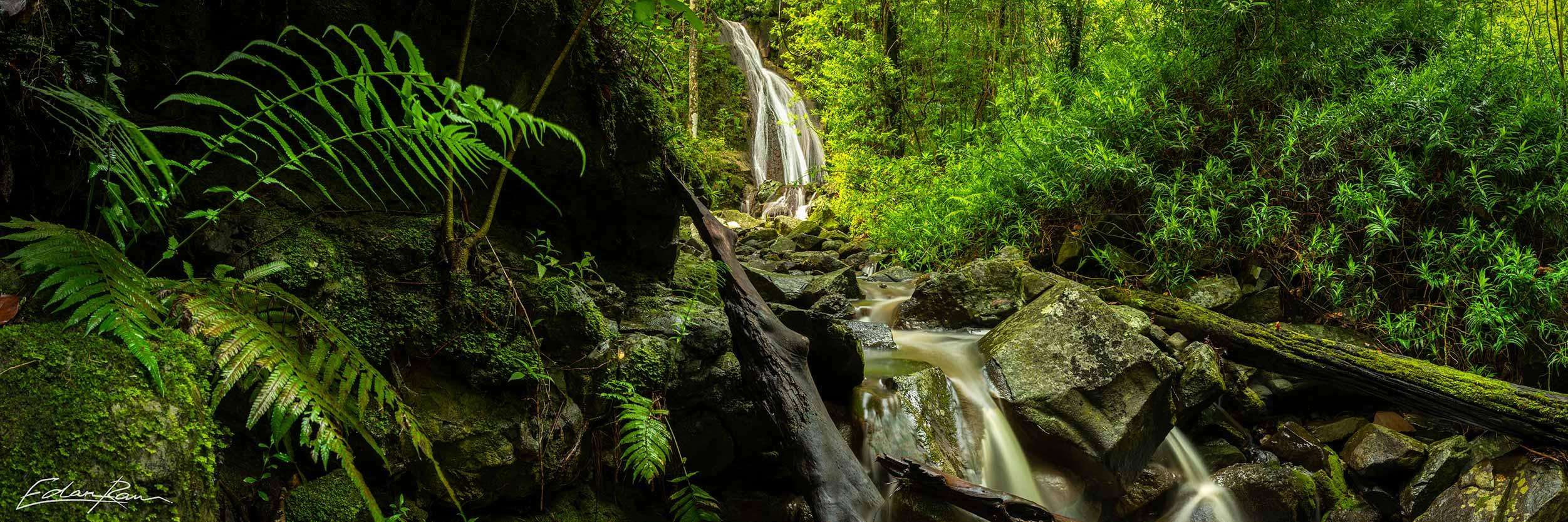 sunshine coast hidden waterfall