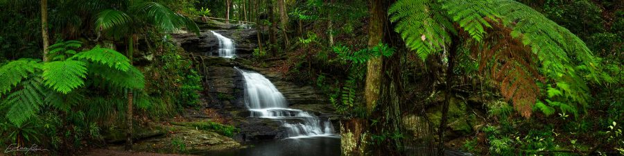 buderim waterfall panoramic landscape photography