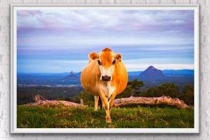 australian landscape photography print