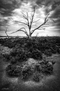 south australian landscape photo