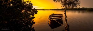 noosa river sunset photo