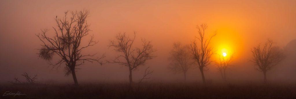 foggy sunrise panorama
